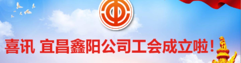 喜讯 宜昌澳门威尼娱乐登录公司工会成立啦!